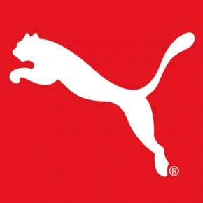 Puma Company Case Study Essay - 1828 Words